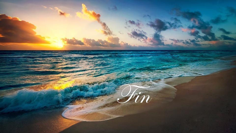 île paradisiaque, vacances, fin histoire bijoux aux couleurs estivales de C-Lyne arts